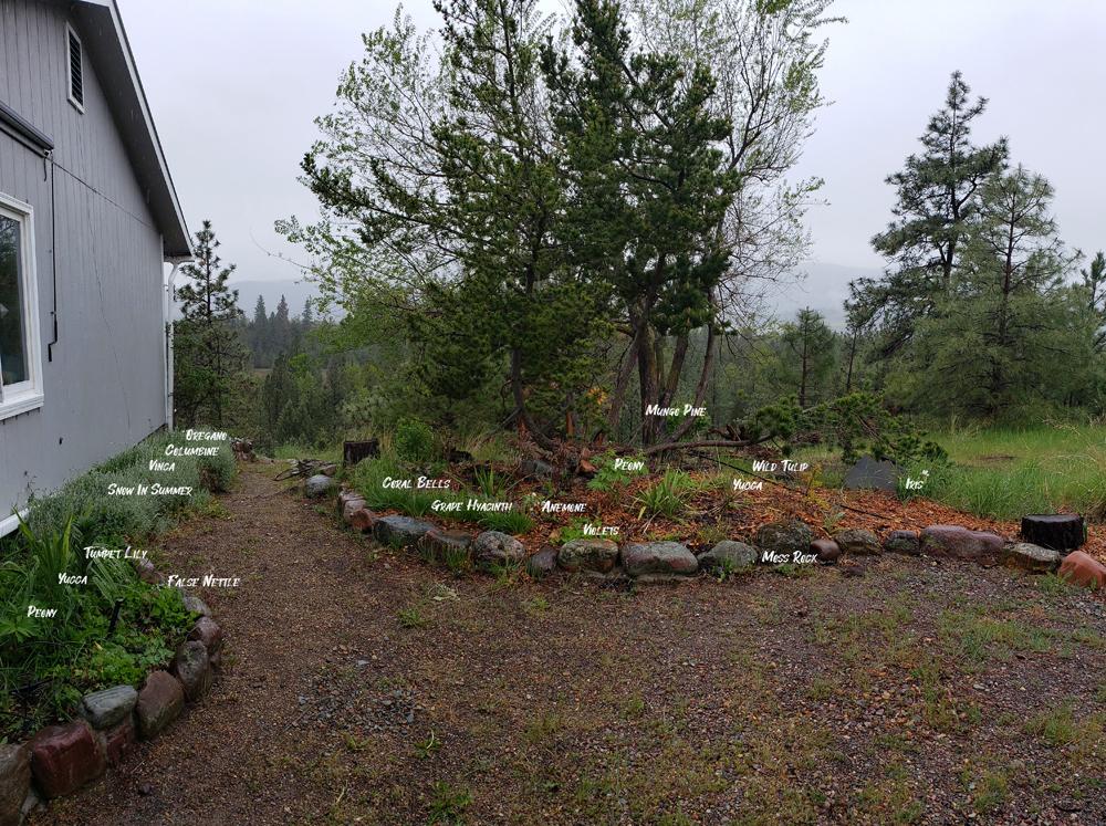 West Garden Named Plants 2021